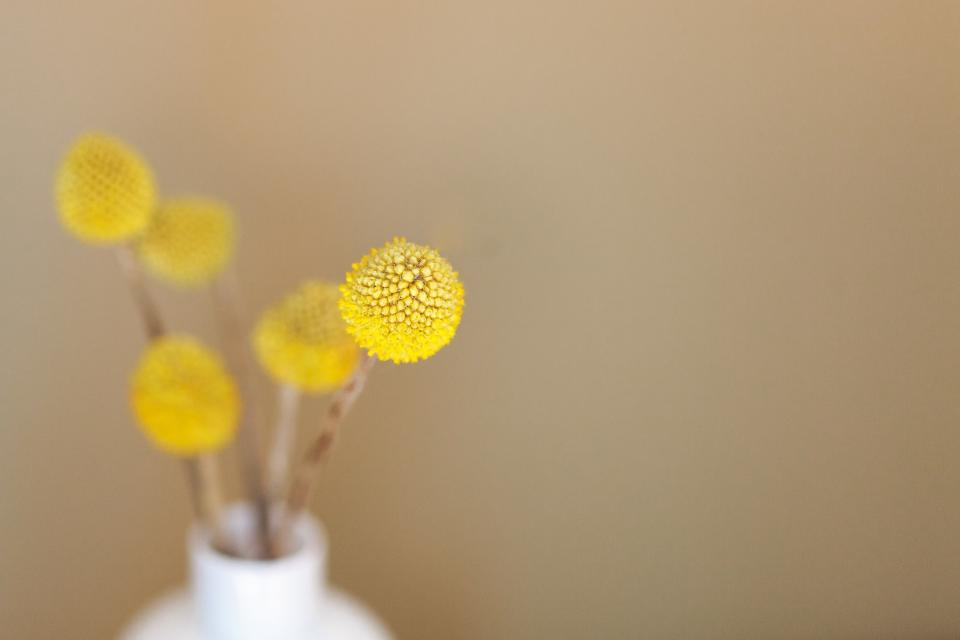 yellow flowers vase decor