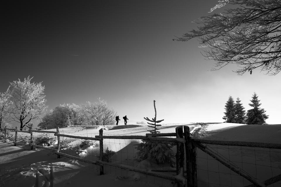 fence snow winter trees plant travel people hiking mountain climbing outdoor nature sky black and white