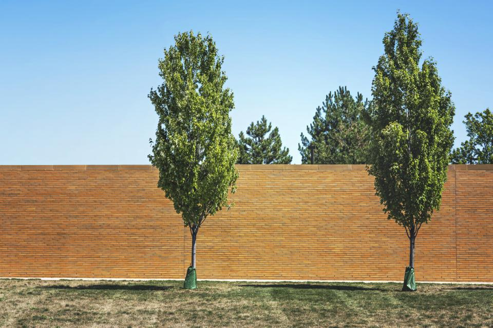 trees grass brick wall blue sky