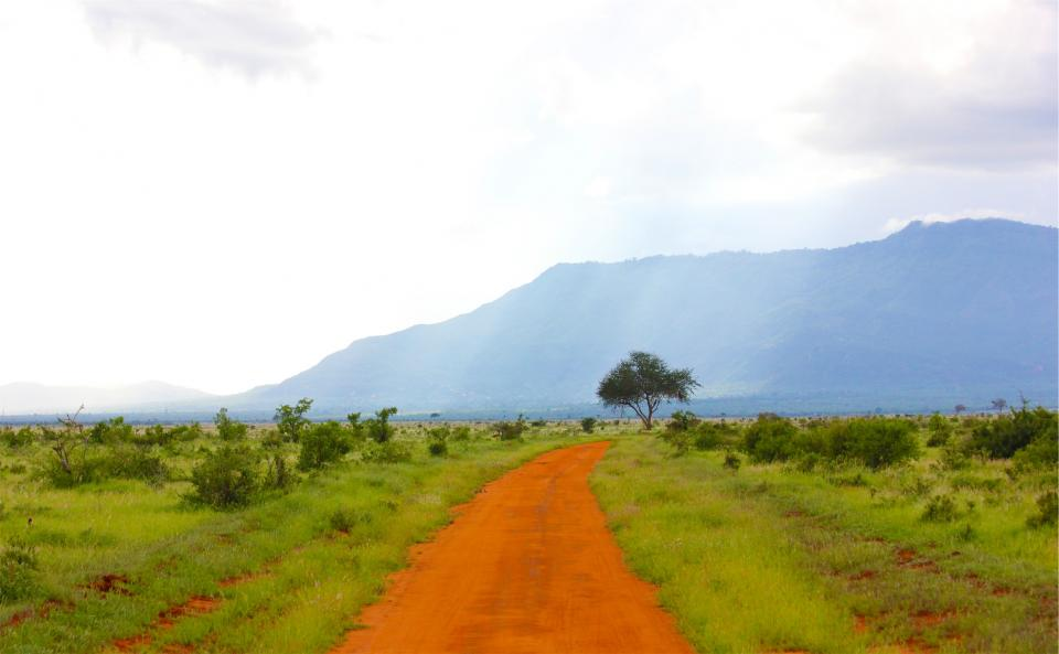 dirt road landscape grass mountains trees sky