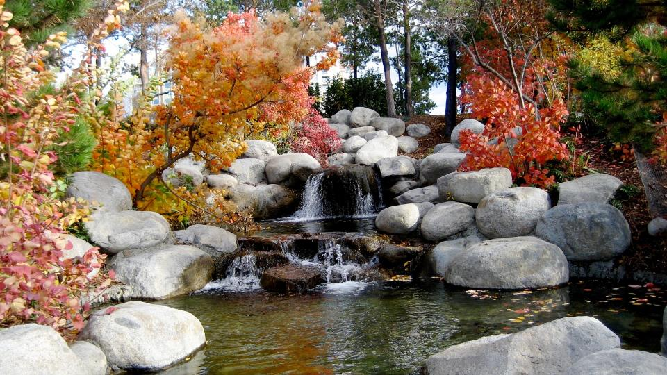 waterfall rocks water leaf fall autumn trees plant nature landscape view