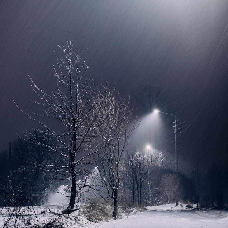 snow dark night trees lights lamp posts sky outdoors nature