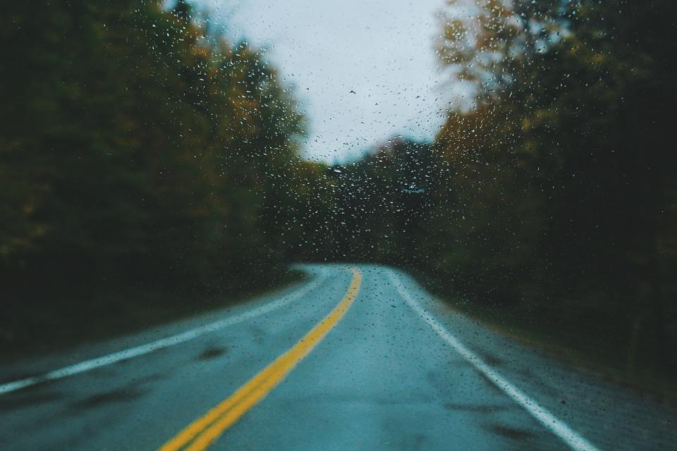 autumn fall trees plant nature forest dark rain road trip travel wet glass raindrops
