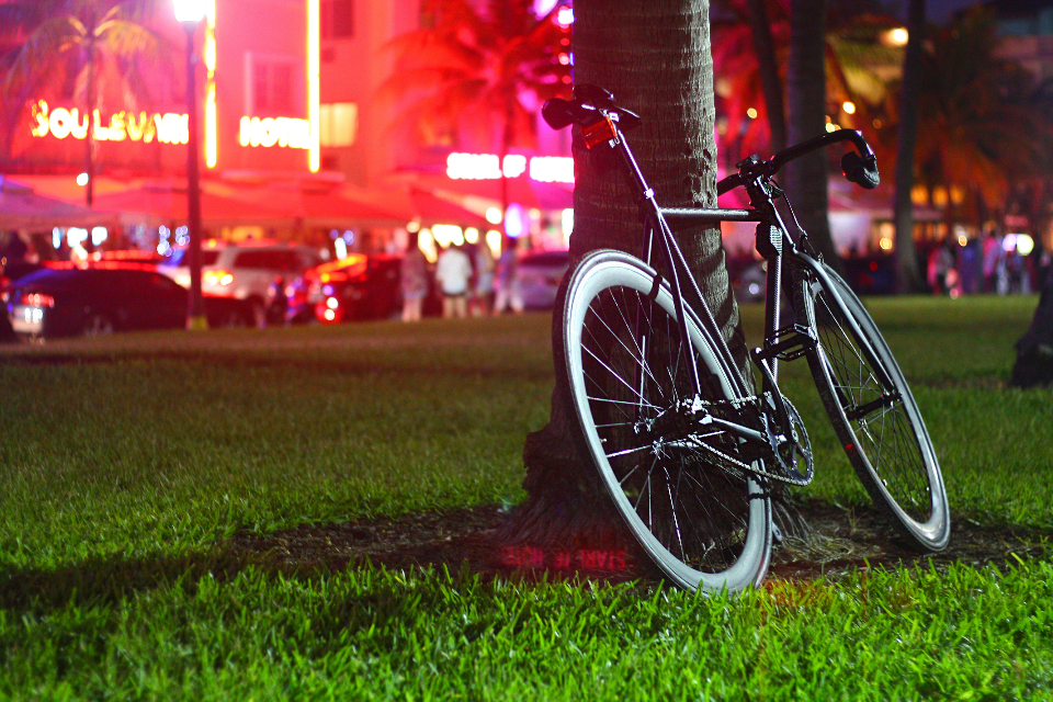 black bike night lights red bicycle tree grass park