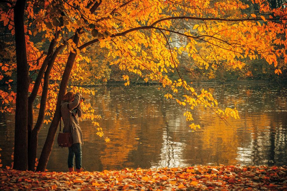 autumn fall leaves colors water lake girl woman camera picture purse bag coat nature outdoors sunny