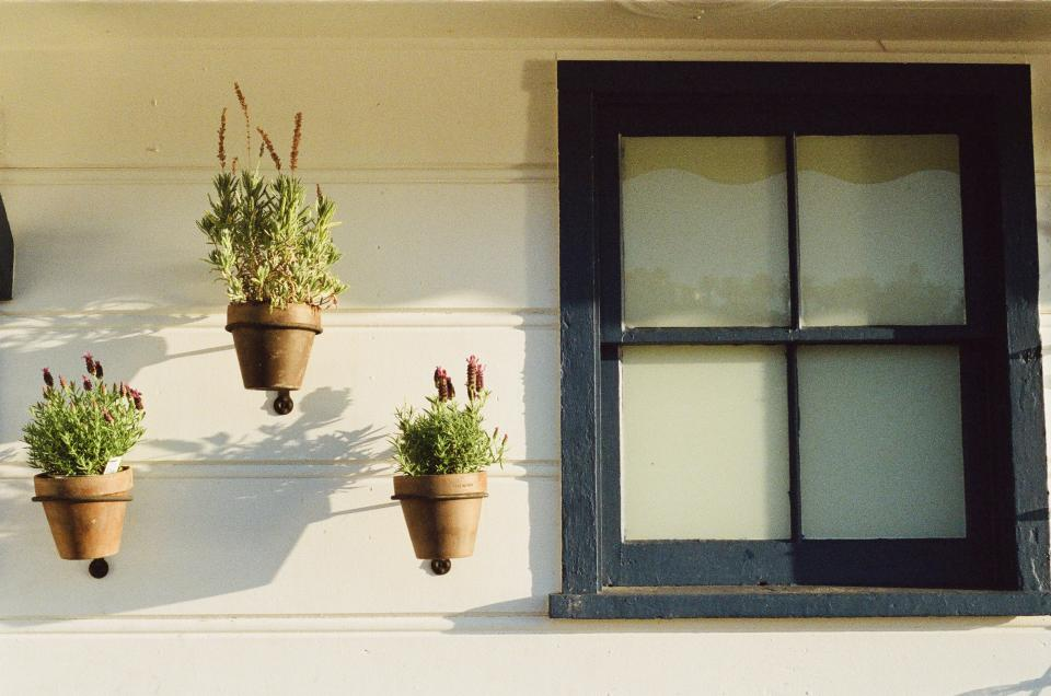 flowers pots siding window wall