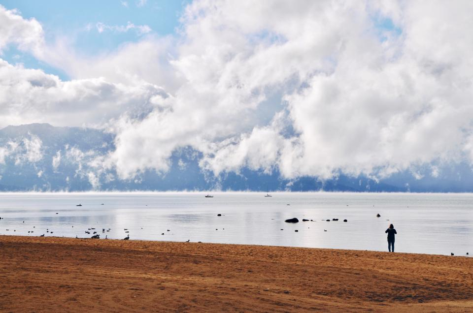 people alone girl shore coast beach sea ocean water mountain clouds nature ducks animal swimming