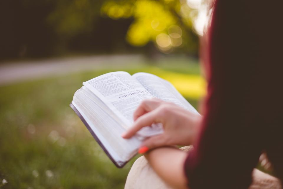 people girl sitting reading book bible hand outdoor bokeh