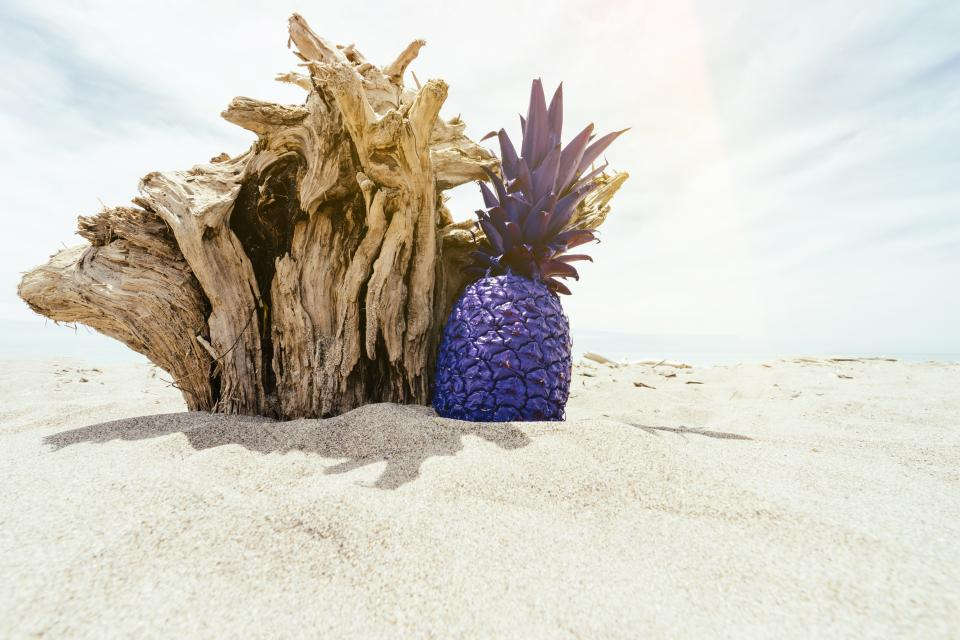 pineapple dessert appetizer fruit juice crop beach ocean sea sand clouds sky trees