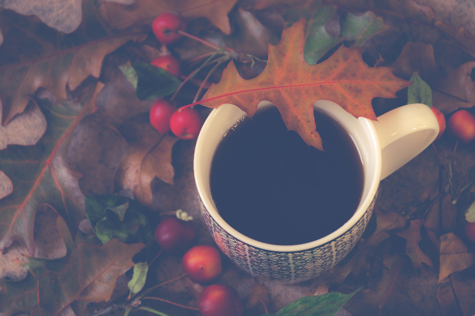 coffee cup black outdoors leaves autumn fall cherries fruit food drink tea tea cup