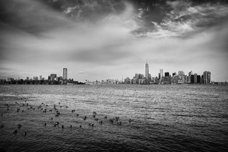 New York skyline buildings architecture city NYC sky clouds cloudy water birds black and white