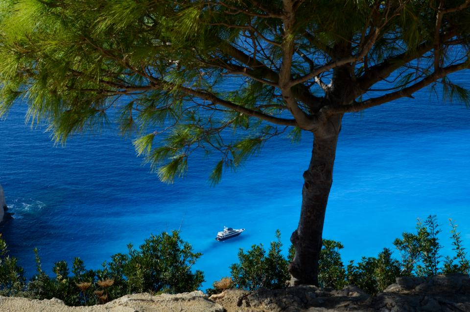 blue water sea ocean coast boats trees