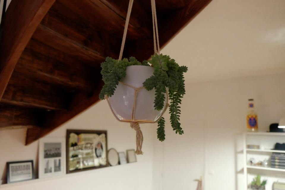 plant pot decor hanging ropes indoors