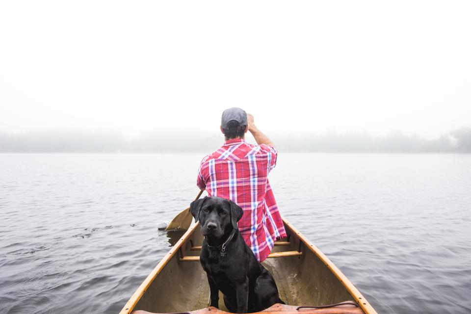 people man boy dog black boat sea ocean