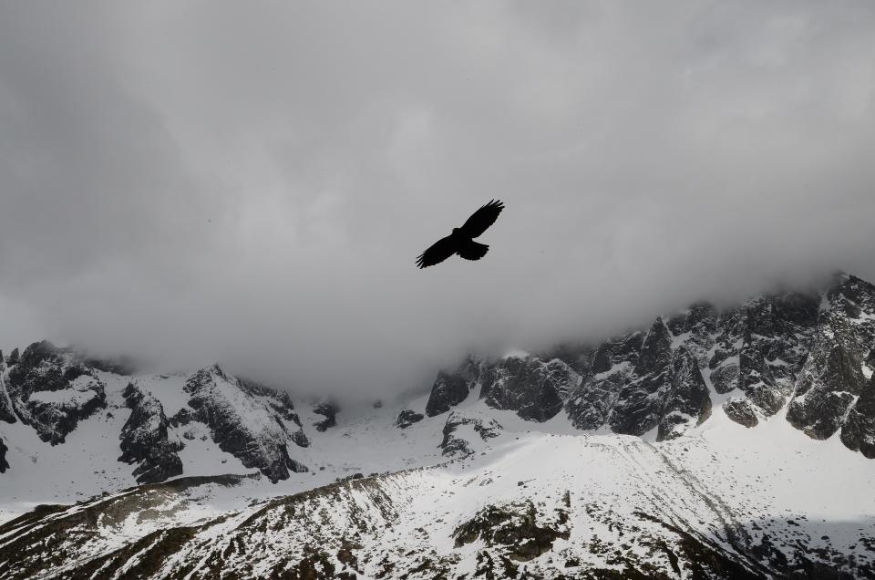 clouds sky grey bird flying snow cold winter mountains cliffs rocks