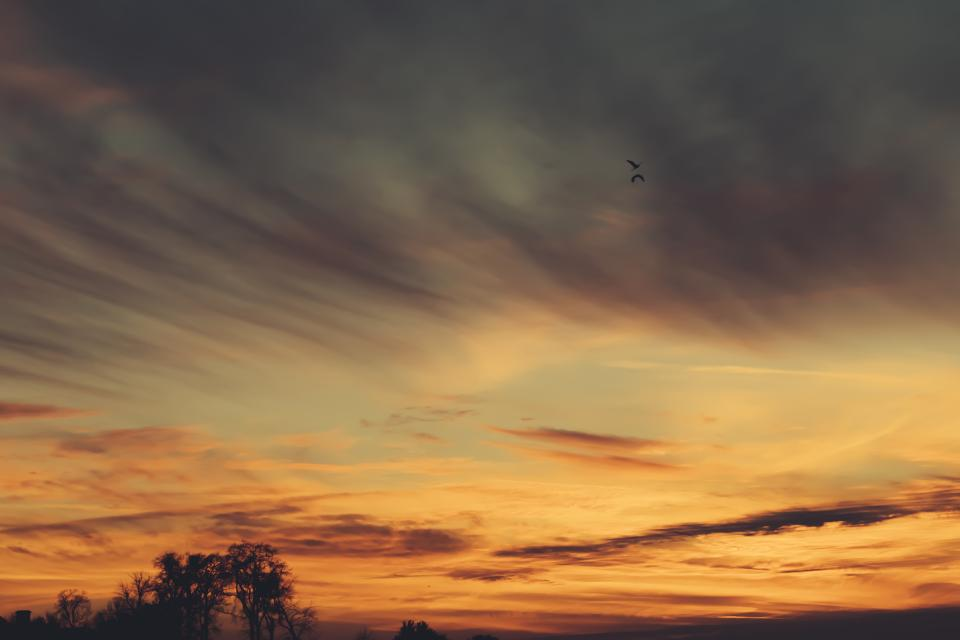 sunset dusk sky clouds birds