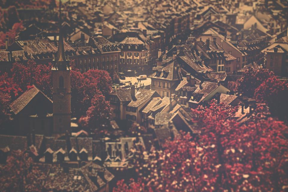 city buildings architecture rooftops trees leaves autumn fall
