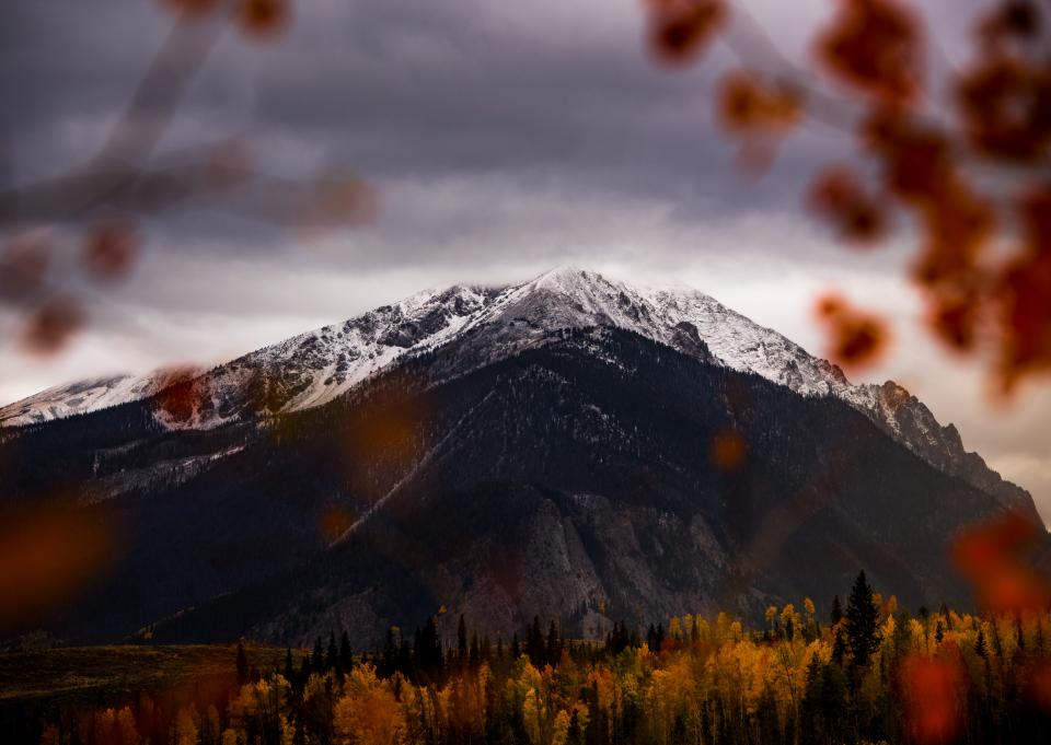 mountain valley highland nature landscape trees plants autumn fall dark clouds sky flower blur