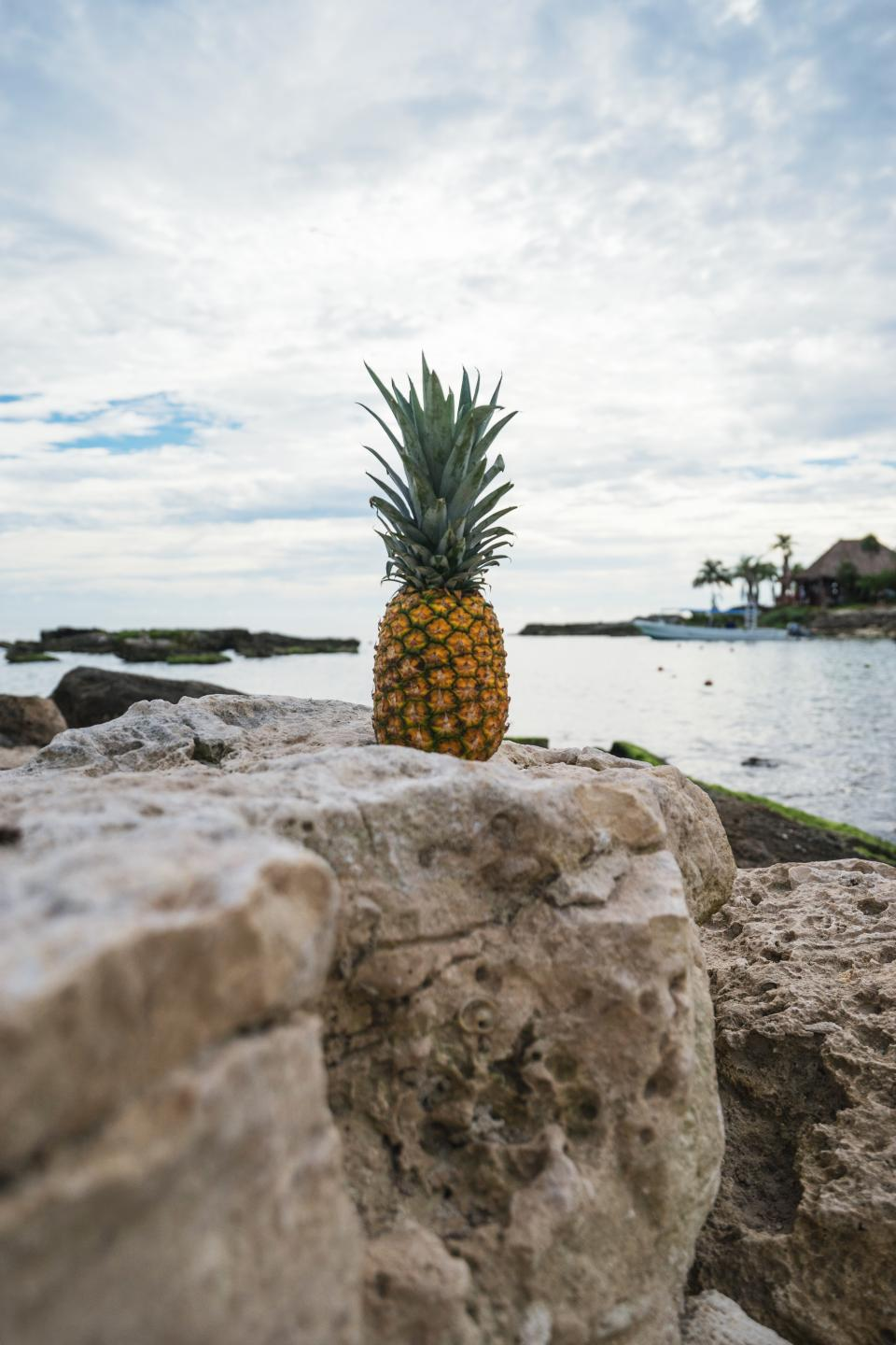 pineapple dessert appetizer fruit juice crop rock nature clouds sky