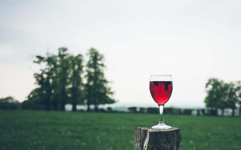 red wine glass beverage drinks green grass playground trees plants view outdoor