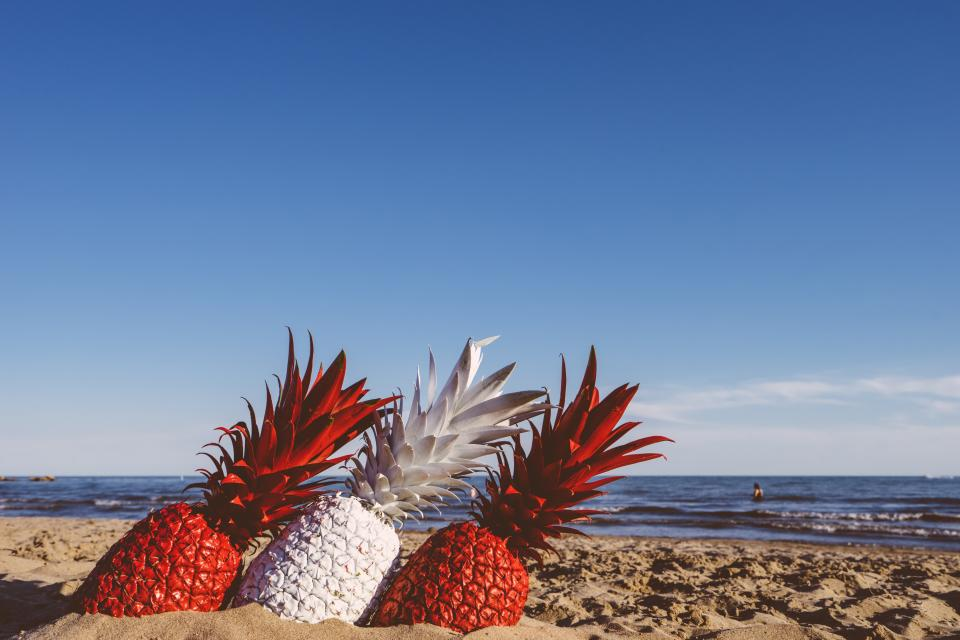 pineapple dessert appetizer fruit juice crop beach ocean sea sand waves clouds sky red white paint