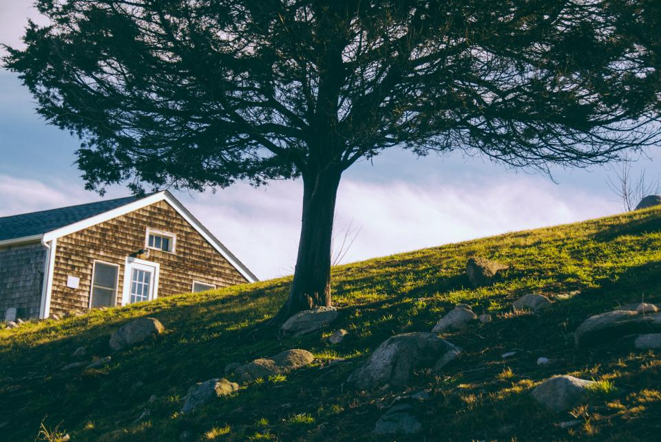 nature landscape trees green grass clouds sky house home windows