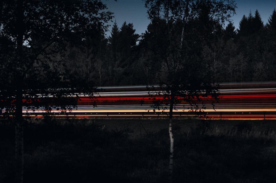 trees road lights dark sky freeway nature trunk plants