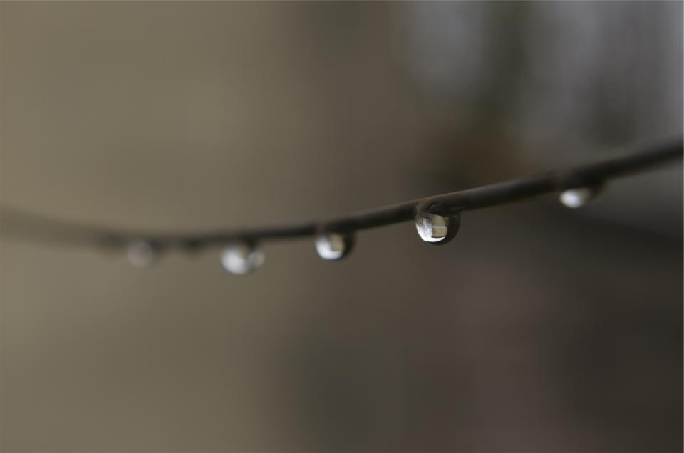 water drops wire