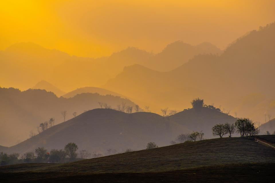 nature landscape mountains gradient brown yellow trees grass