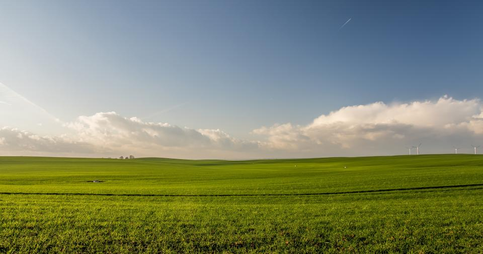 green grass field farm agriculture plants nature crops clouds sky view