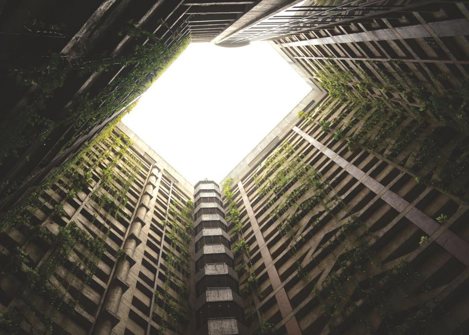 skylight building concrete structure building vines architecture