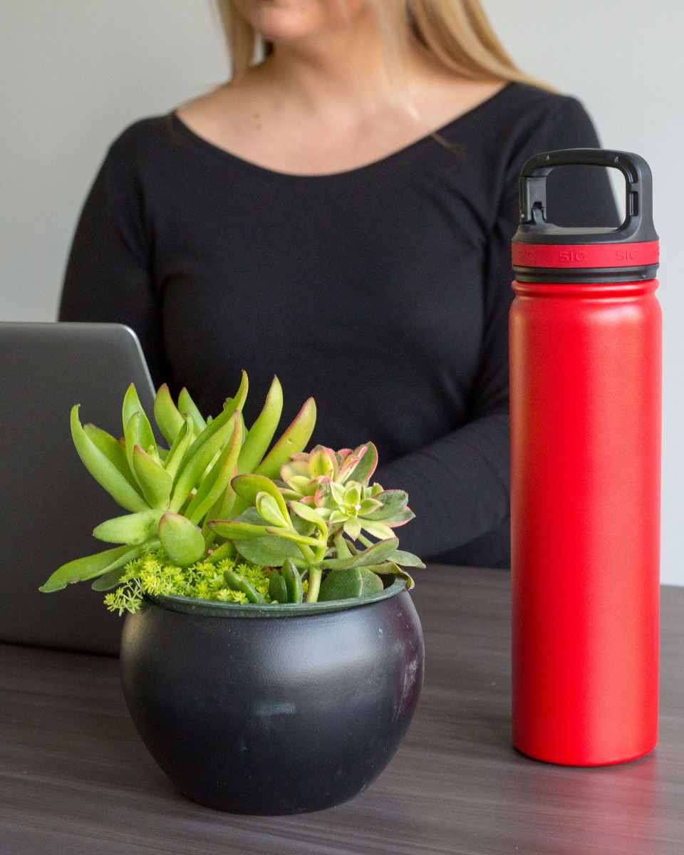 woman computer freelance office desk plant water bottle laptop typing person business
