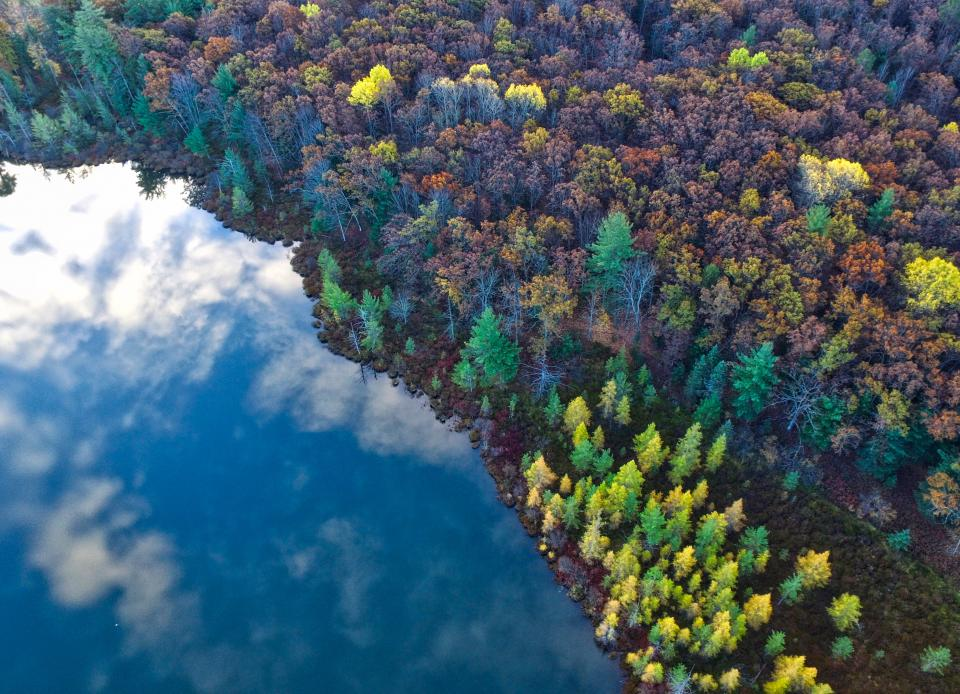 trees clolorful aerial view plant forest nature fall autumn sea ocean blue water clouds sky reflection