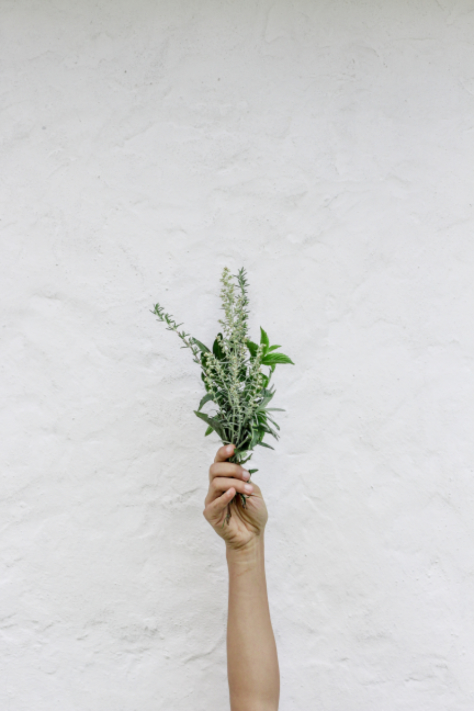 hand holding flowers isolated background texture copy space bloom blossom fresh garden nature natural wall bouquet arm leaves leaf feminine floral spring plant
