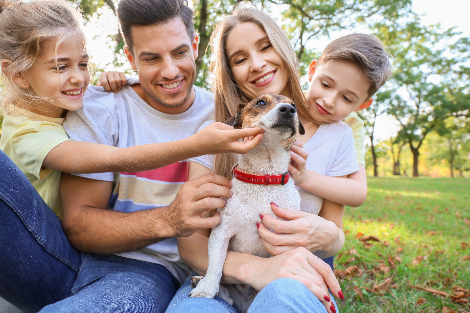 mesothelioma compensation for family members