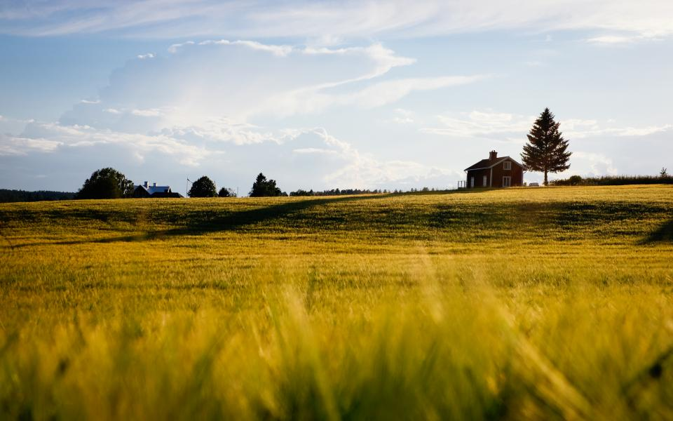 nature grass plains sky clouds countryside house trees
