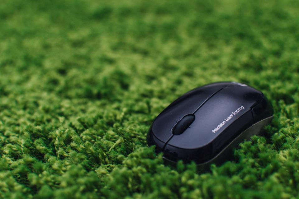 mouse business technology computer green grass