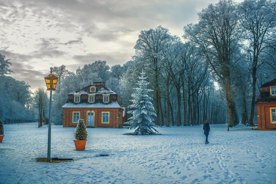 trees plant house snow winter ice cold weather nature people walking alone