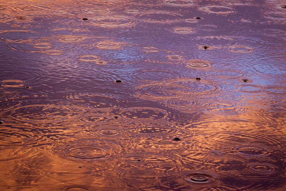 raining rain drops water ripples dusk evening nature lake