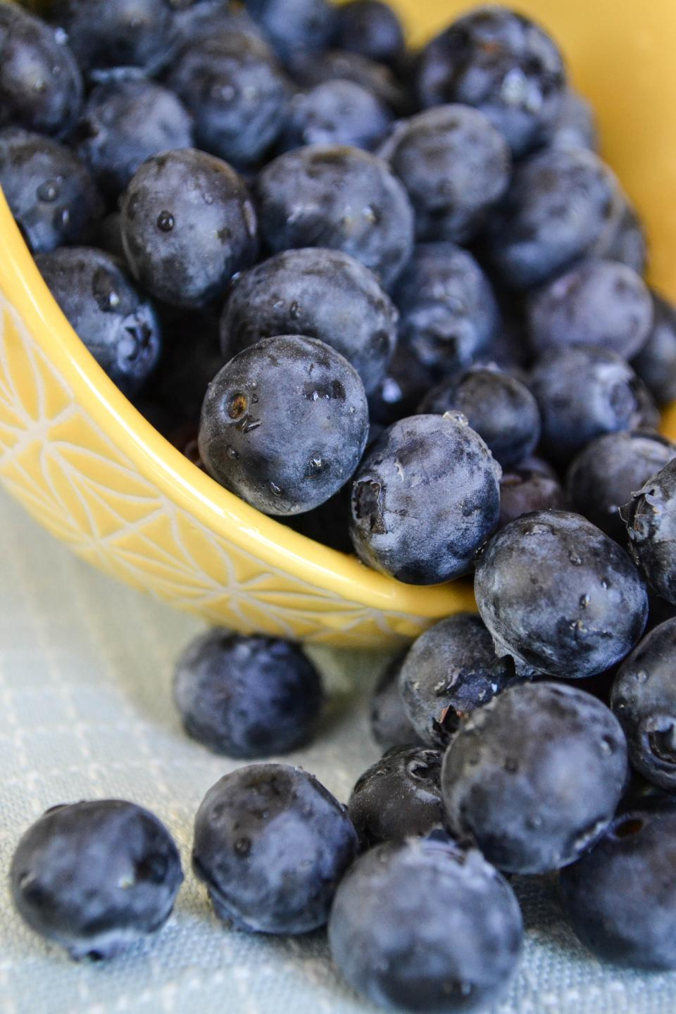 blueberries fruits food bowl healthy