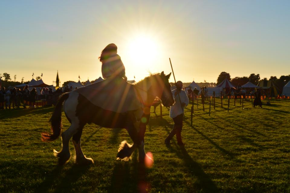 animal horse ride sport people crowd girls men stick playground green grass field sunset sunlight sunshine sky