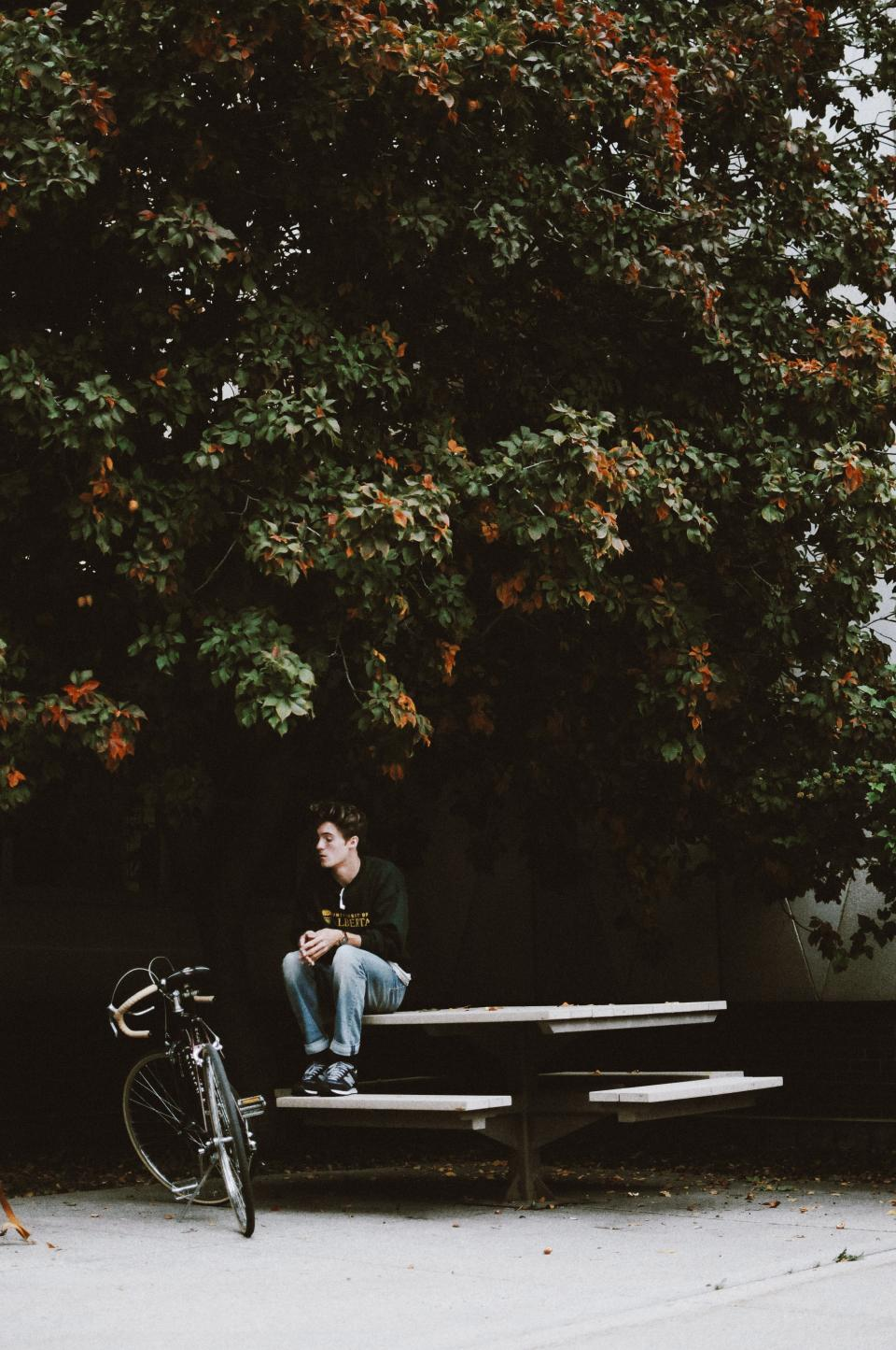 tree plant outside table bench bike bicycle people guy alone sad thinking sitting