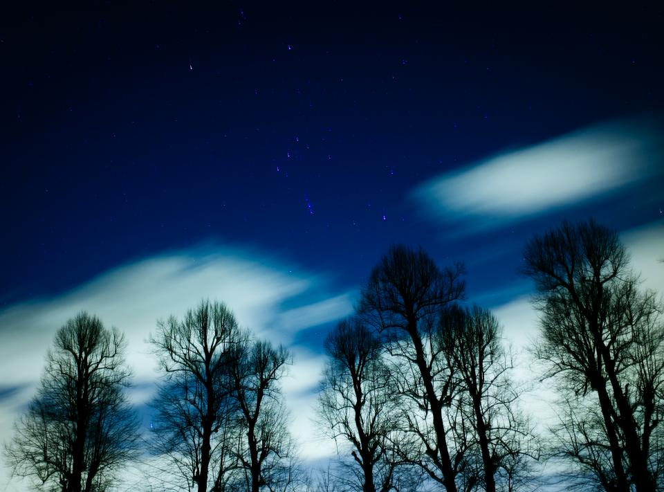 stars galaxy space astronomy night dark evening trees forest woods nature sky