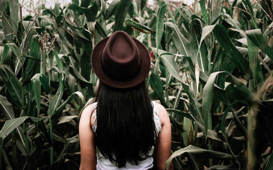 woman girl lady people back contemplate fashion style fedora corn field leaves stalks still beauty