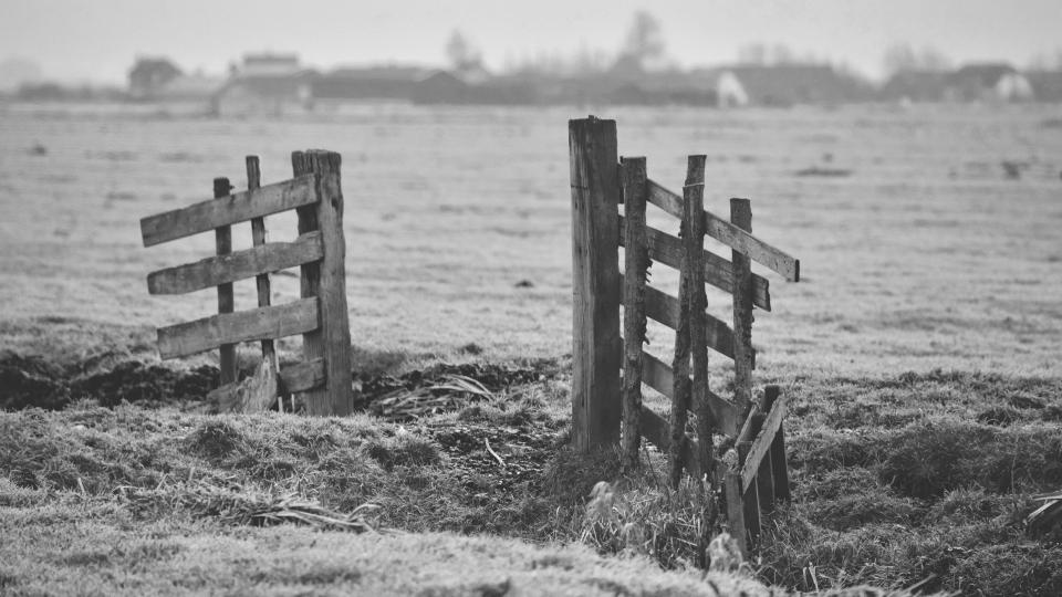 barn field plant fence wood grass farm black and white monochrome