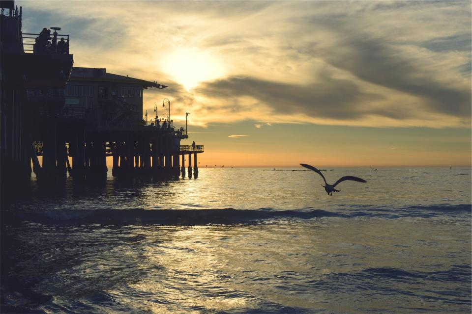 sunset pier dock ocean sea waves birds wings flying shore sky clouds horizon dusk people