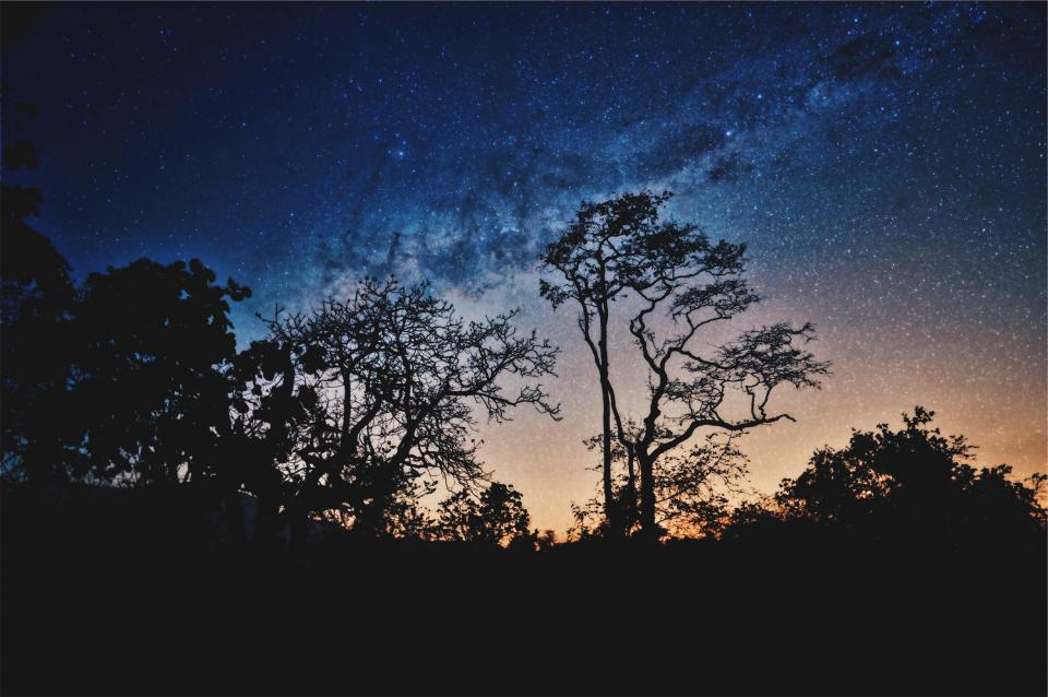 nature landscape trees mountain stars dark night stargazing astrophotography shadow constellation