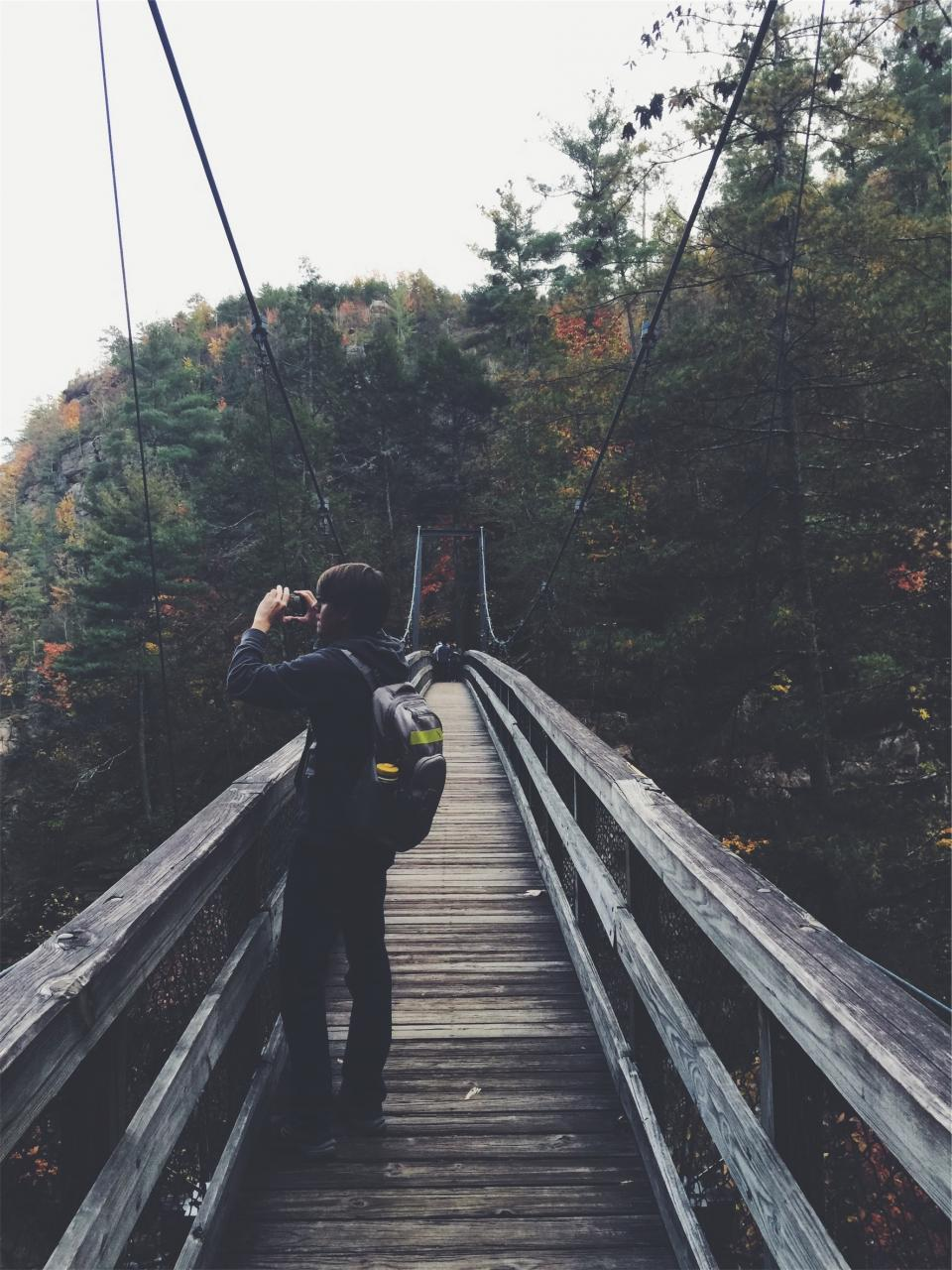 wood bridge nature forest woods guy photographer photograph camera backpack knapsack hiking trail