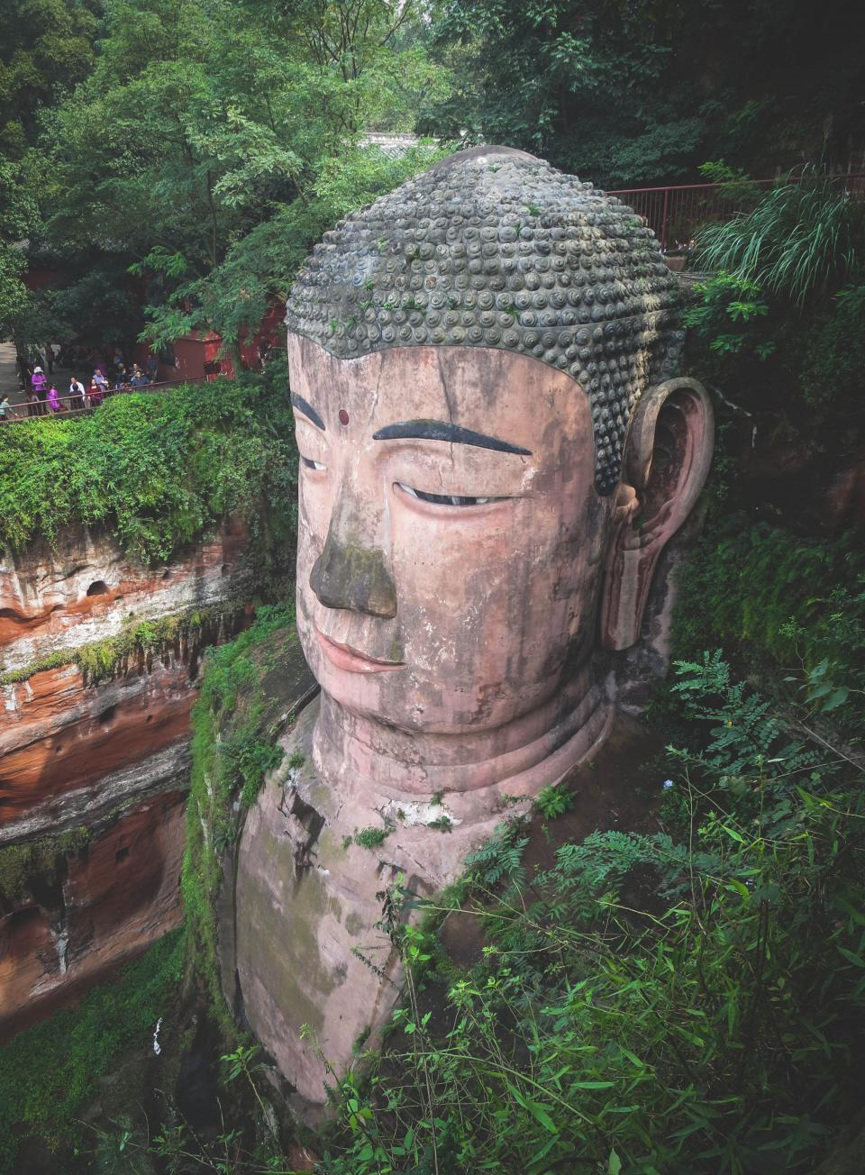 Leshan Giant Buddha culture statue people tourists plants leaves Sichuan China Buddhism Buddhist