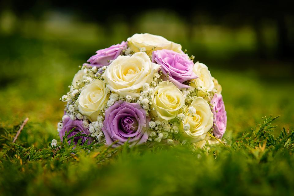 bouquet flower bunch roses petal green grass wedding photography nature